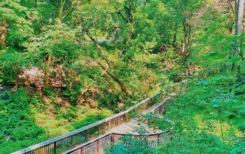 Glen Stewart Park